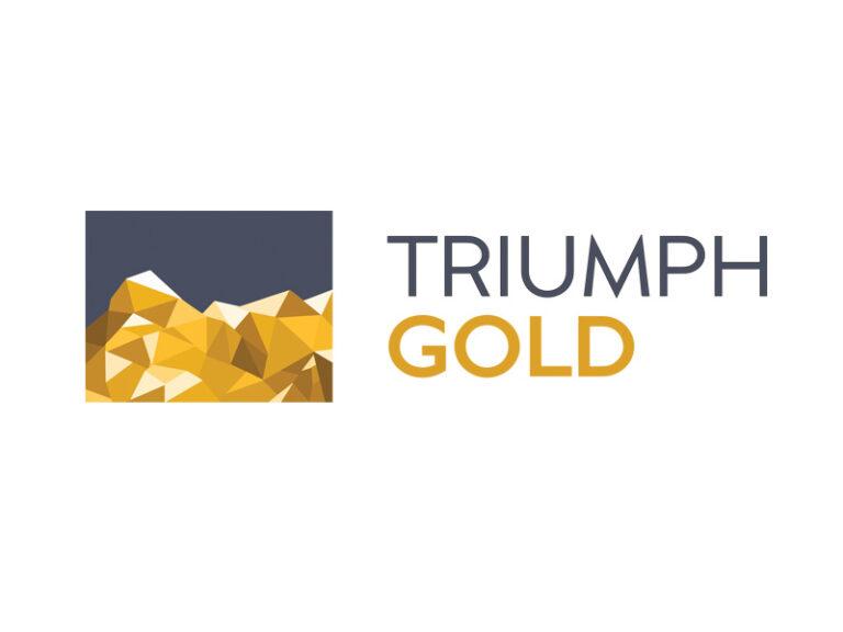 DigiGeoData - triumph logo