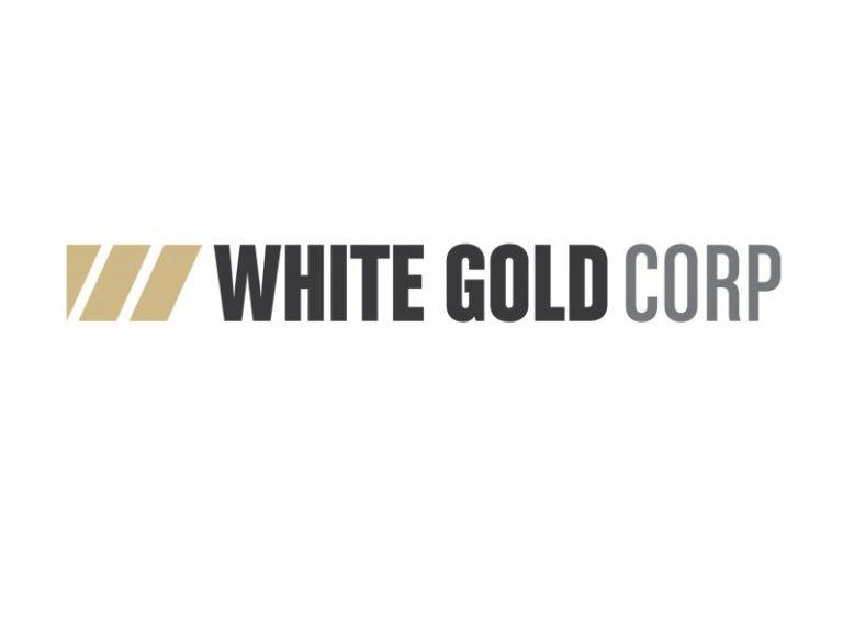 DigiGeoData - white gold logo