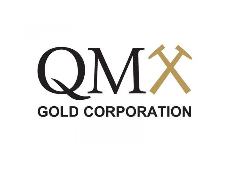 DigiGeoData - QMX logo