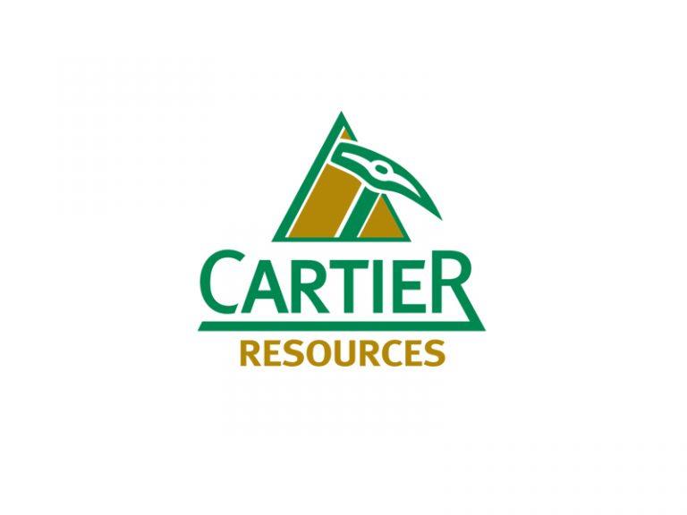 DigiGeoData - cartier logo