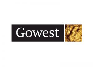 DigiGeoData - gowest logo