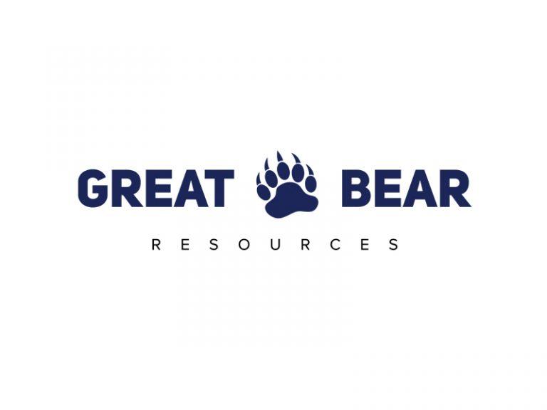 DigiGeoData - great bear logo