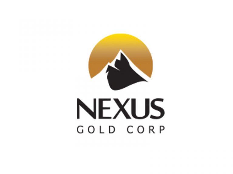 DigiGeoData - nexus logo