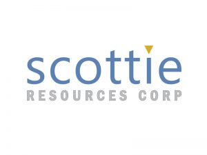 DigiGeoData - scottie logo