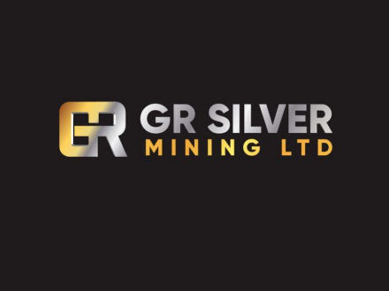 DigiGeoData - gr silver logo