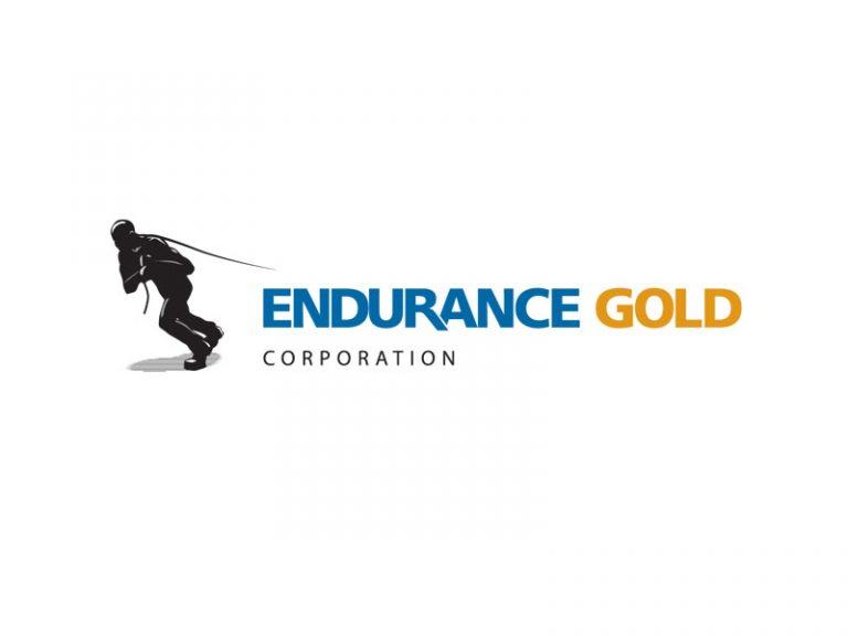 DigiGeoData - endurance logo