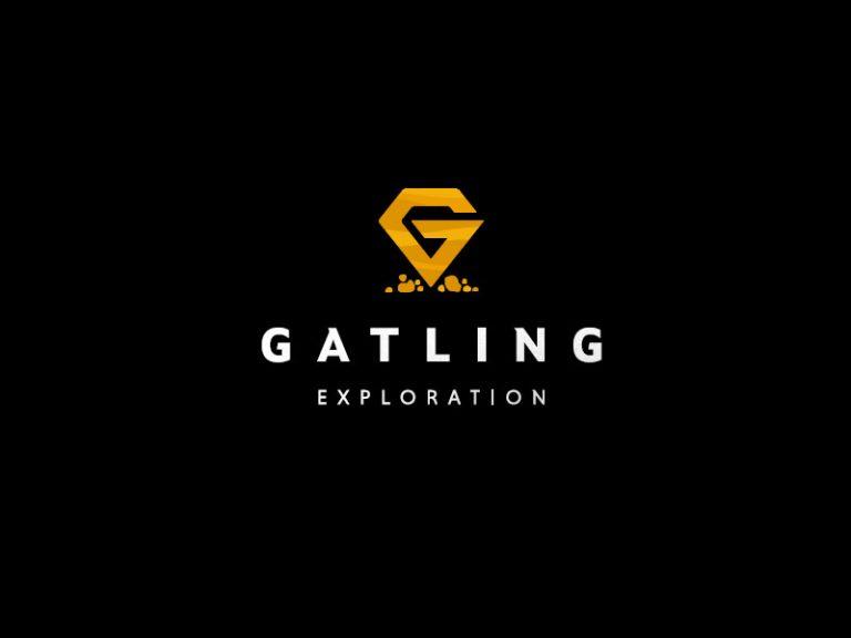DigiGeoData - gatling logo