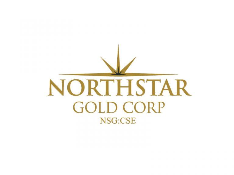 DigiGeoData - northstar logo