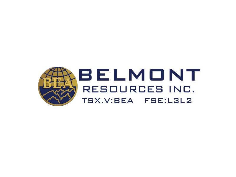DigiGeoData - belmont logo