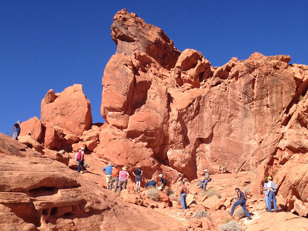 Geological Society of Nevada