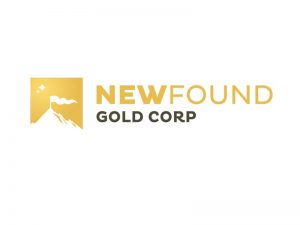 DigiGeoData - new found gold logo