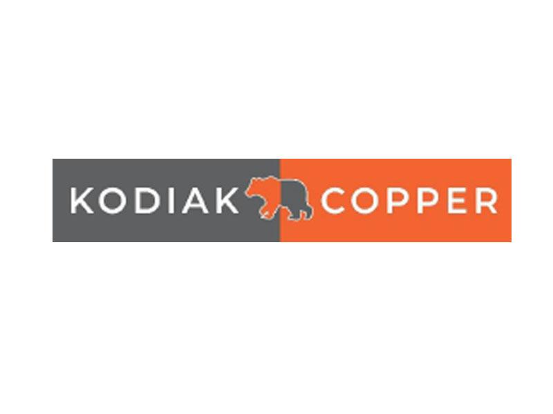 DigiGeoData - kodiak logo