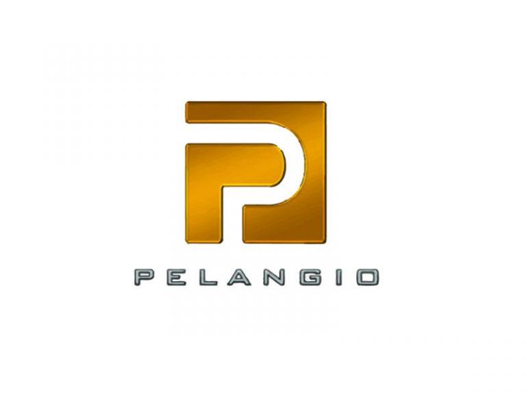 DigiGeoData - pelangio logo