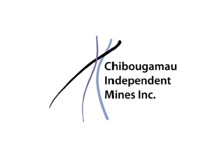 DigiGeoData - cim logo