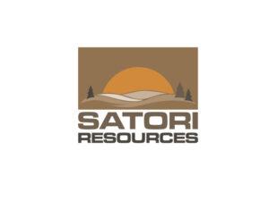 DigiGeoData - satori new logo