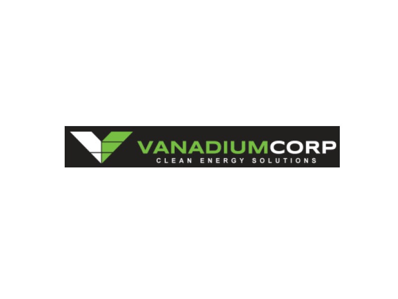 DigiGeoData - vanadium logo