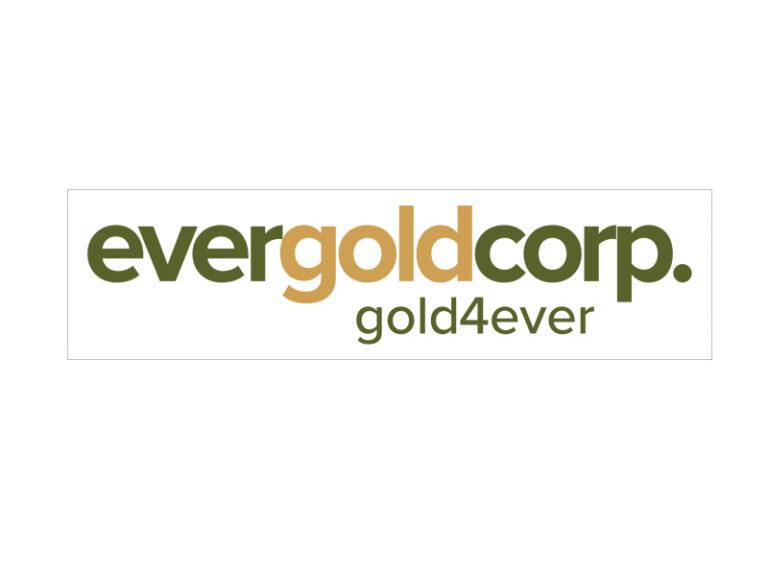 DigiGeoData - evergold logo box 1