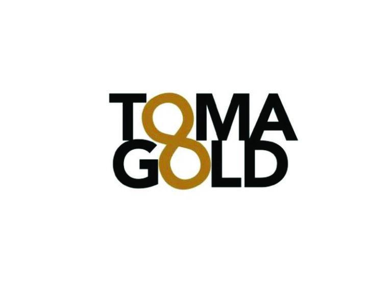 DigiGeoData - tomagold logo