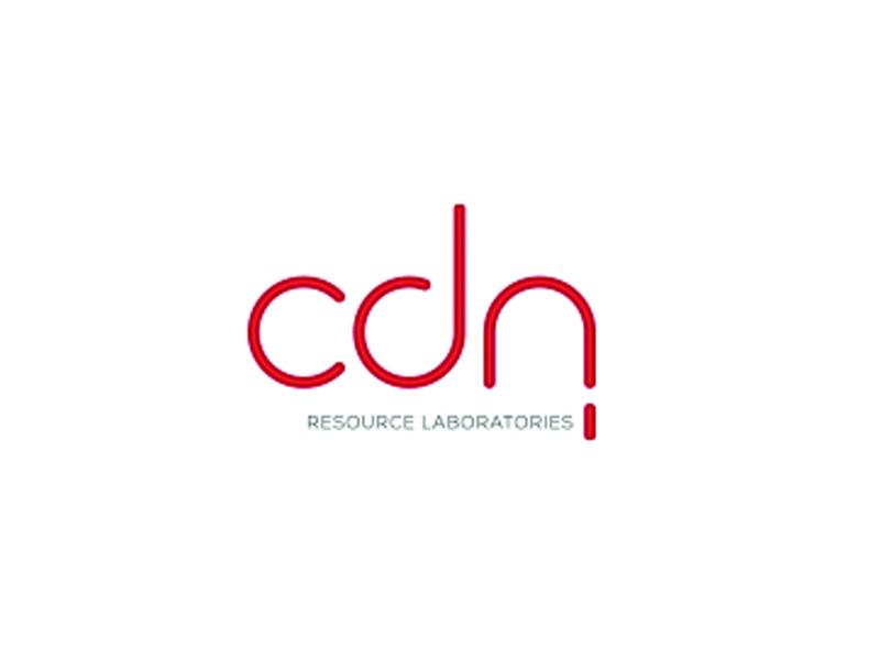 DigiGeoData - cdn logo